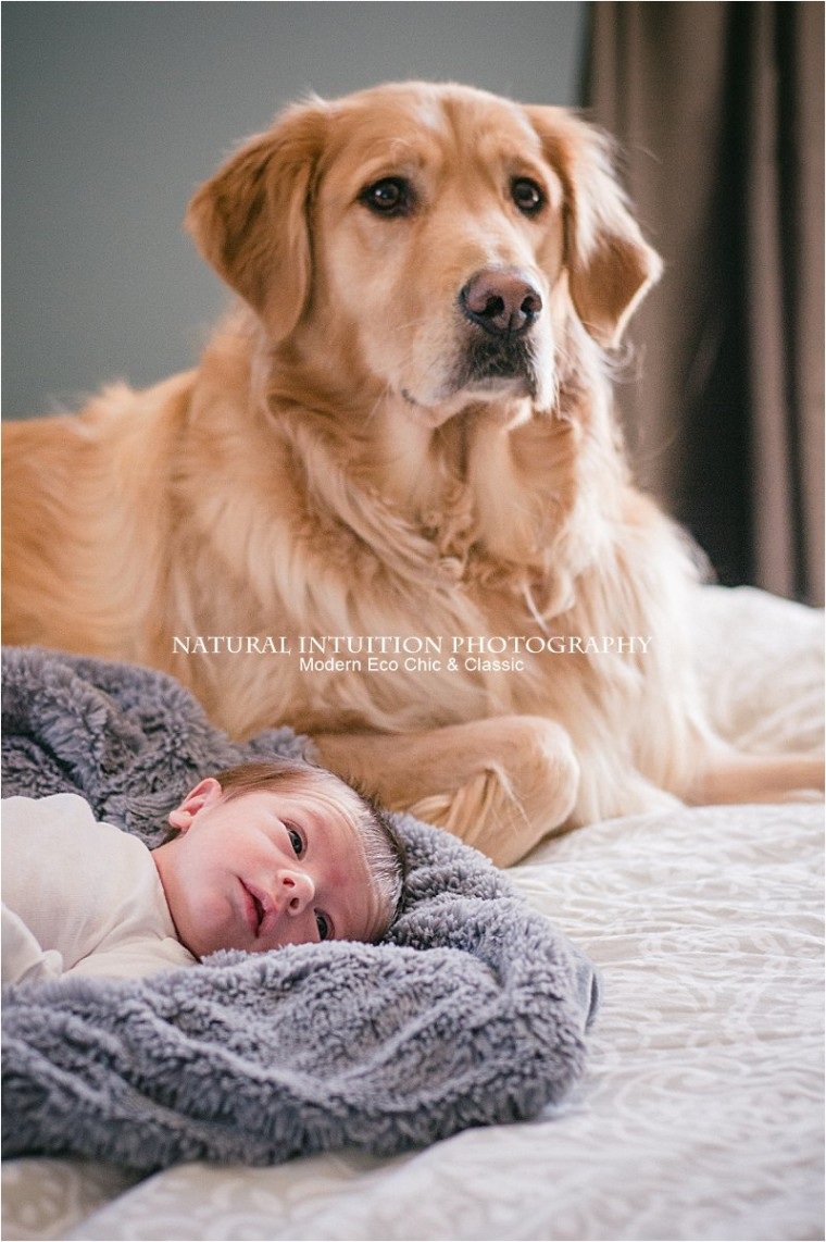 Wisconsin Lifestyle Newborn Photographer(c) Natural Intuition Photography_0022