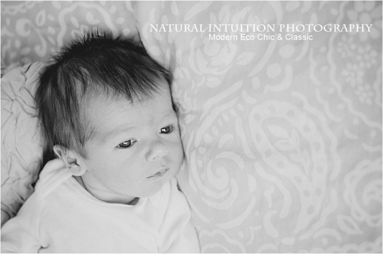 Wisconsin Lifestyle Newborn Photographer(c) Natural Intuition Photography_0023