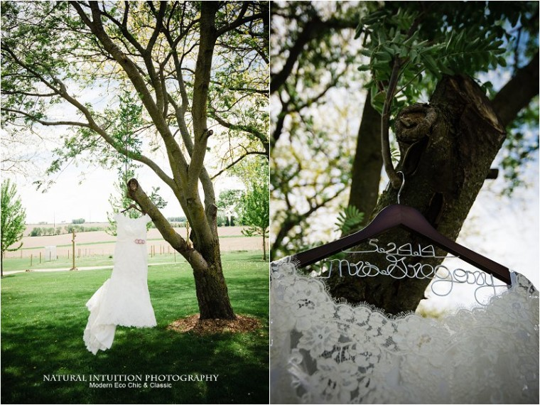Madision Wisconsin Wedding Photographer (c) Natural Intuition Photography_0002