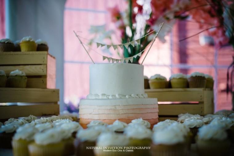 Sheboygan Wisconsin Wedding Photographer (c) Natural Intuition Photography_0047