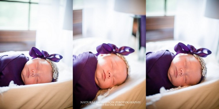 Stevens Point Wisconsin Family Portrait Photographer (c) Natural Intuition Photography_0001