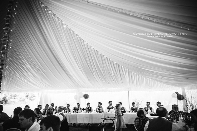 Wisconsin Wedding Photographer (c) Natural Intuition Photography_0059