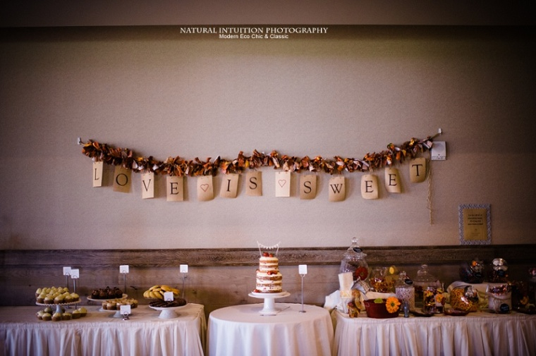 Waupaca WI Stevens Point WI Fall Wedding Photographer (c) Natural Intuition Photography_0079