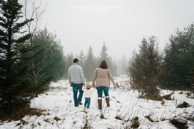 Stevens Point WI Foggy Engagement Sessionv (c) Natural Intuition Photography_0003