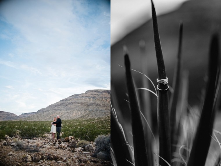 Destination Wedding Photographer, Las Vegas - Natural Intuition Photography_0034