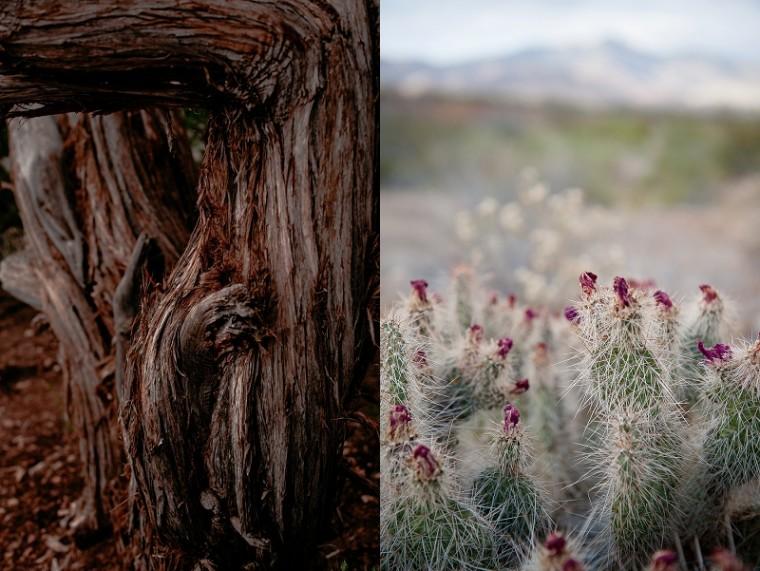Destination Wedding Photographer, Las Vegas - Natural Intuition Photography  Christine Dopp_0020