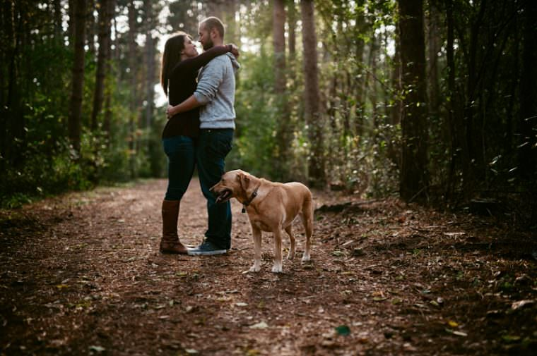 fall engagement with dog, married in milwaukee