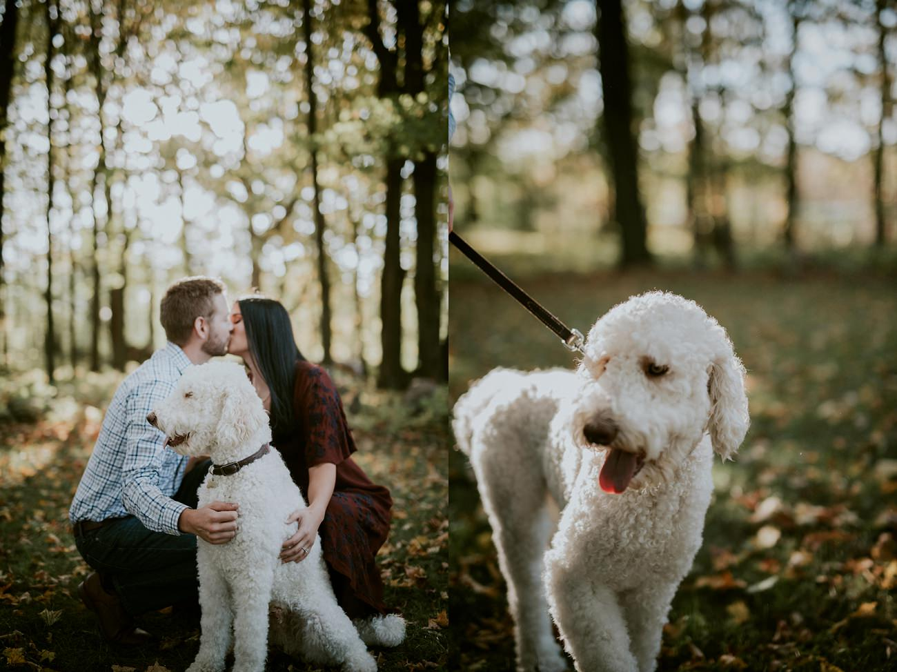 Engagement Sessions with Dogs- Milwaukee Wedding Photographer - Natural Intuition Photography
