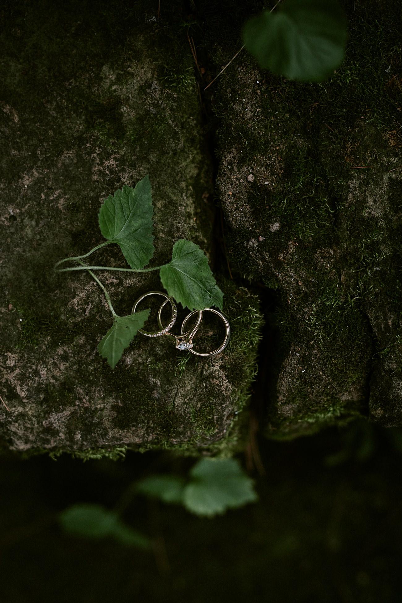 Wedding Rings, Backyard Hilltop Wedding in Spring Green Wisconsin, Madison WI Wedding Photographer