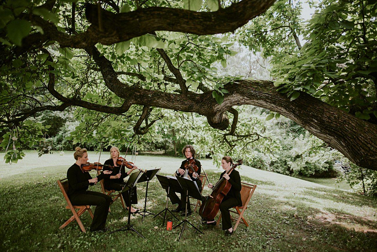 Tent Wedding, Greenery on tables, Backyard Hilltop Wedding in Spring Green Wisconsin, Madison WI Wedding Photographer