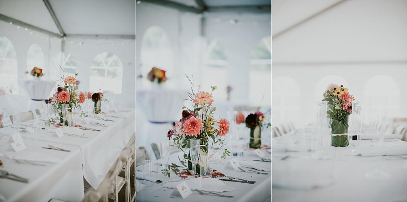 First Look, Mt Horeb Wisconsin Backyard Wedding - Madison Wisconsin Wedding Photographer