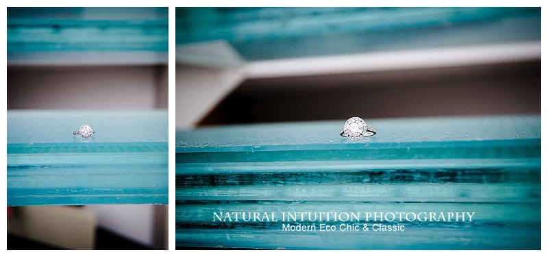 Madison Wisconsin Engagement Photographer(c) Natural Intuition Photography_0020