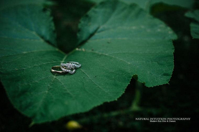 Wisconsin Wedding Photographer (c) Natural Intuition Photography_0008