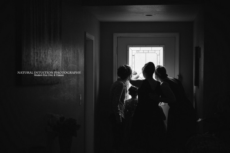 Wisconsin Wedding Photographer (c) Natural Intuition Photography_0014