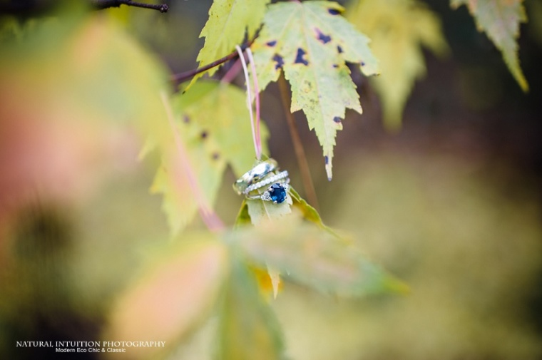 Waupaca WI Stevens Point WI Fall Wedding Photographer (c) Natural Intuition Photography_0013