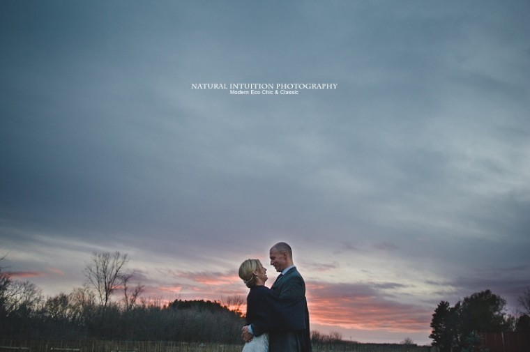 Wisconsin Wedding and Engagement Photographer (c) Natural Intuition Photography_0026