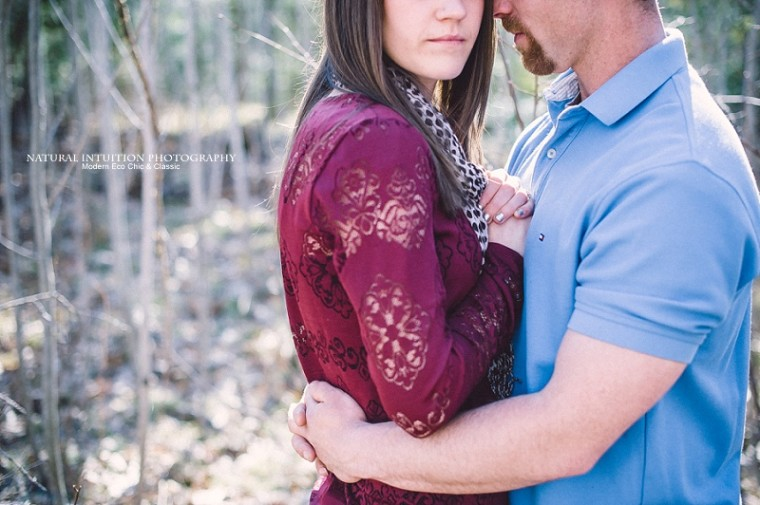 Wisconsin Wedding and Engagement Photographer (c) Natural Intuition Photography_0036