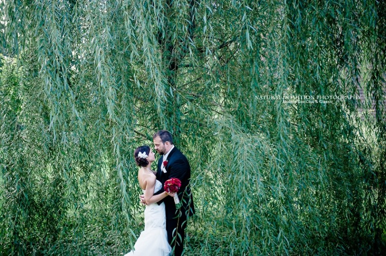 Wisconsin Wedding and Engagement Photographer (c) Natural Intuition Photography_0041