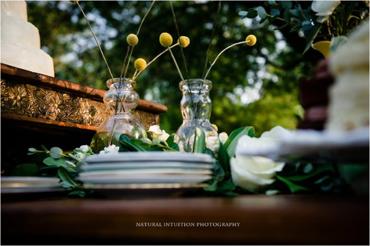 Wisconsin Wedding Photographer (c) Natural Intuition Photography_0001