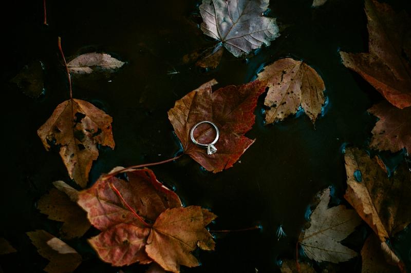 Fall Ring Shot - Milwaukee Wisconsin