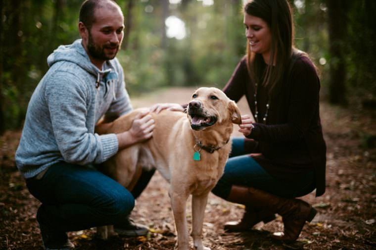 fall engagement with dog, Milwaukee engagement with dog