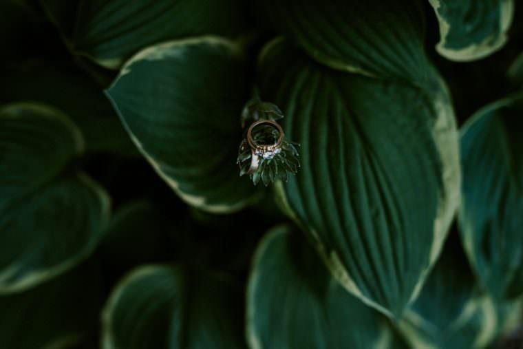 Wedding ring Shot, Unique Wedding Venues, Madison WI Wedding Photographer