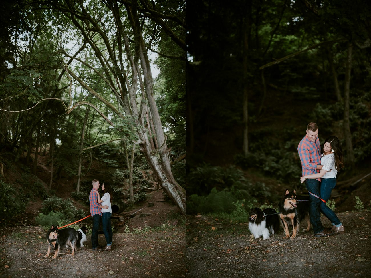 Engagement with dogs, Point Defiance Park, Tacoma WA Photographer - Natural Intuition Photography