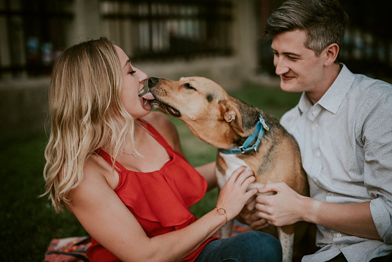 Engagement with Dogs, Chicago Engagement, Backyard Engagement in Chicago, Chicago In Home Engagement Session, Chicago Wedding Photographer - natural intuition photography