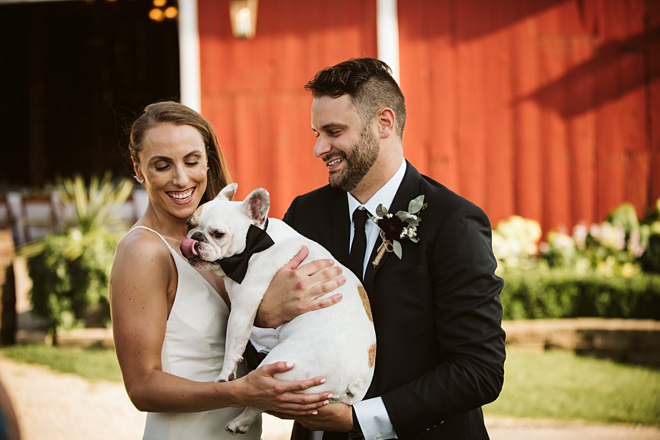Dogs at Weddings, Bridal Barn & Garden Wedding, Madison Wisconsin, Mt Horeb Wisconsin Wedding Photographer, Natural Intuition Photography, Wedding Reception Photographer